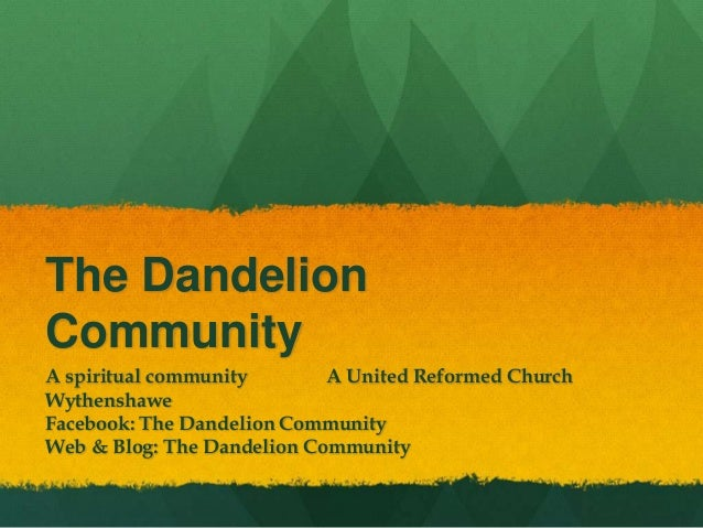 Mini Story of The Dandelion Community - context, theology, questions