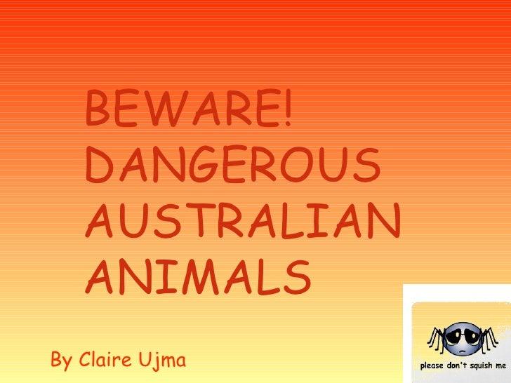 BEWARE! DANGEROUS AUSTRALIAN ANIMALS By Claire Ujma