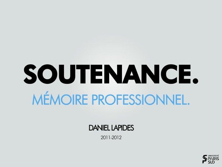 MÉMOIRE PROFESSIONNEL.       DANIEL LAPIDES          2011-2012