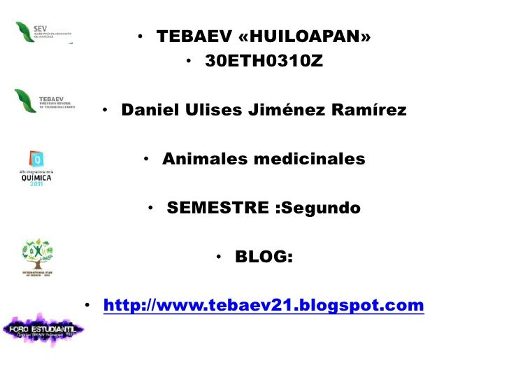 TEBAEV «HUILOAPAN»<br />30ETH0310Z<br />Daniel Ulises Jiménez Ramírez <br />Animales medicinales<br />SEMESTRE :Segundo <b...