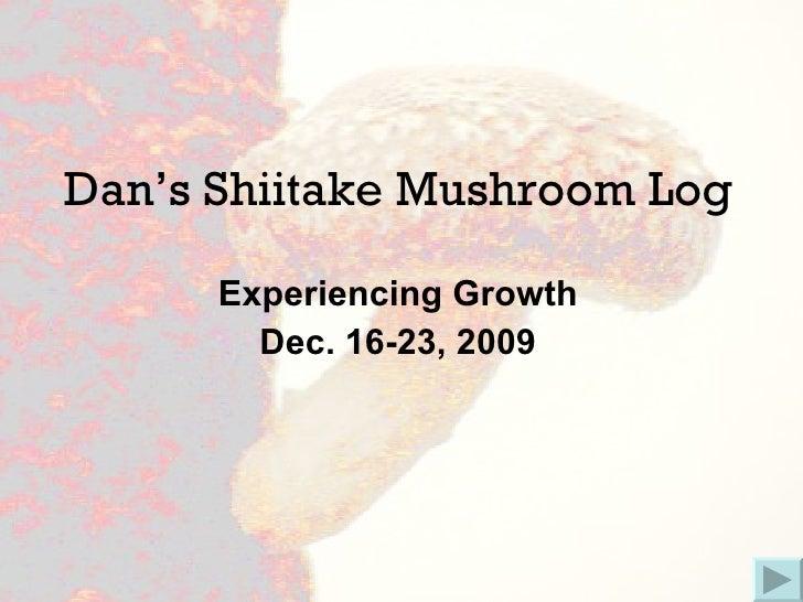 Dan's Shiitake Mushroom Log Experiencing Growth Dec. 16-23, 2009