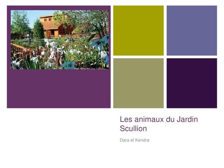 +    Les animaux du Jardin    Scullion    Dara et Kendra