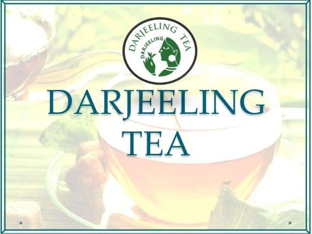 Darjeeling tea- a study