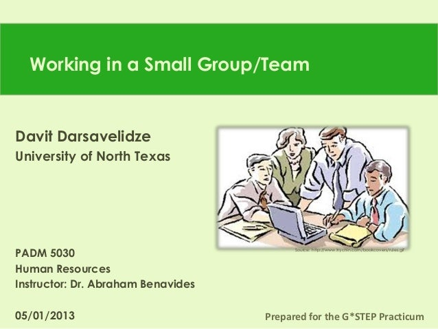 Darsavelidze d. presentation for a  practicum _working in a small team