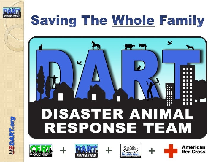 Dart Unit 03 Shelter Organization