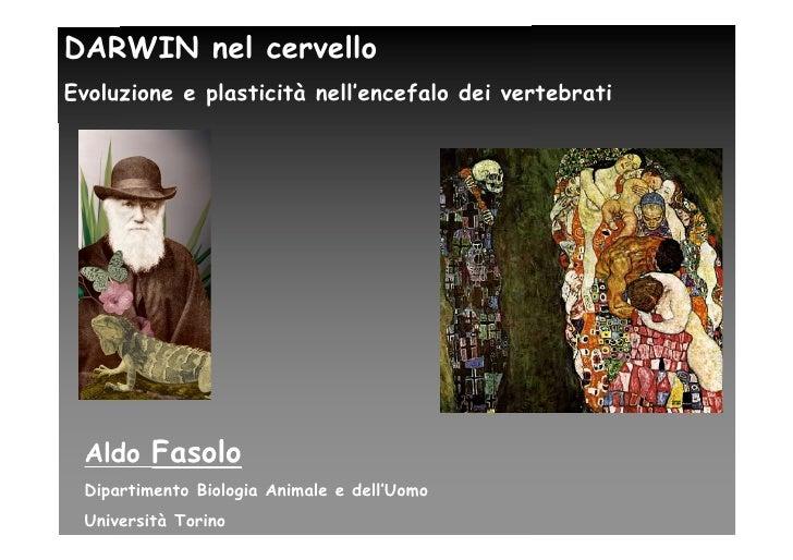 DARWIN nel cervello Evoluzione e plasticità nell'encefalo dei vertebrati      Aldo Fasolo  Dipartimento Biologia Animale e...