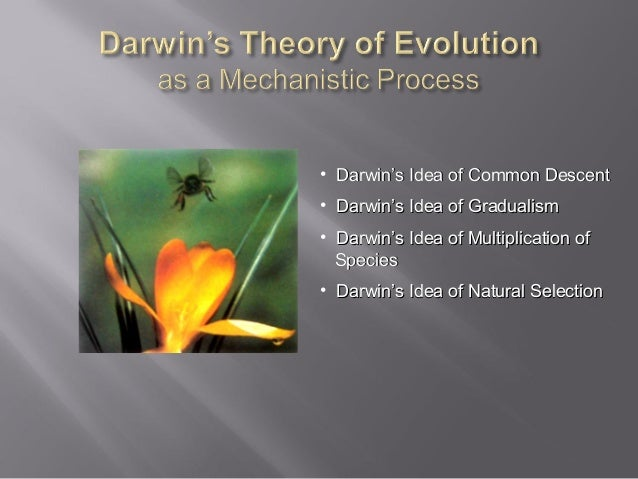 • Darwin's Idea of Common Descent • Darwin's Idea of Gradualism • Darwin's Idea of Multiplication of Species • Darwin's Id...
