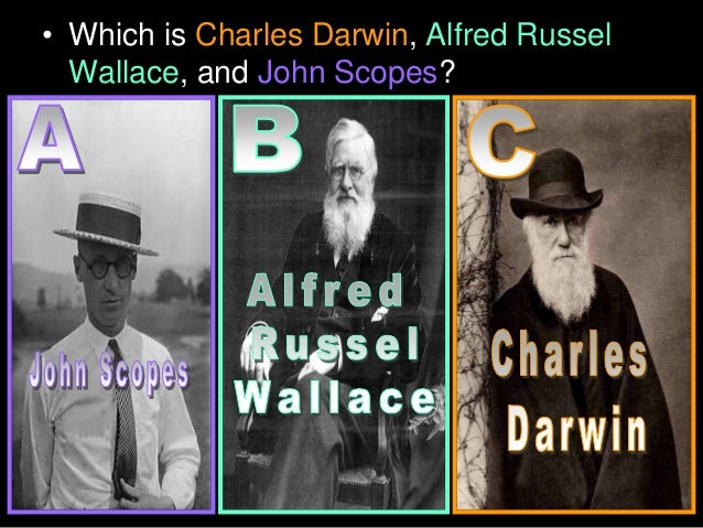 Charles Darwin, Alfred Russel Wallace, John Scopes, Evolution Lesson PowerPoint