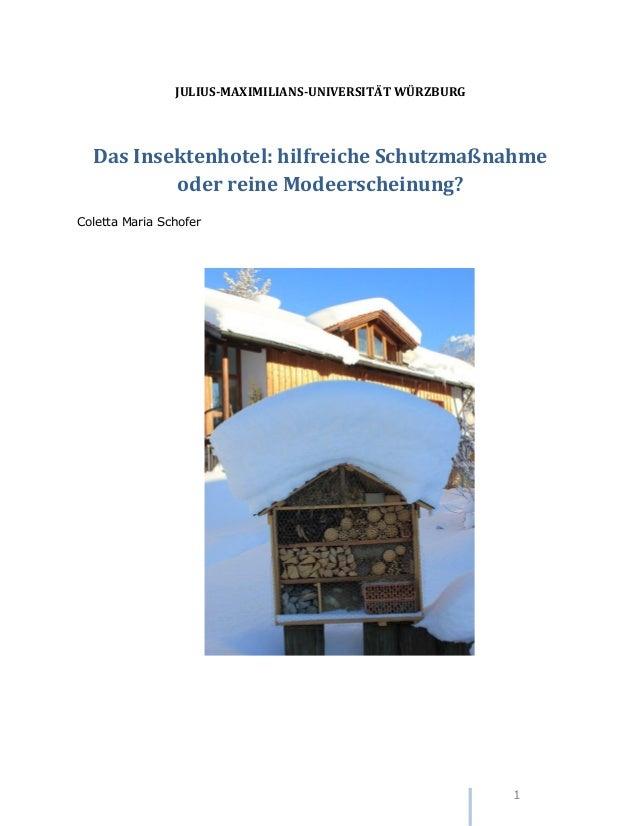 1 JULIUS-MAXIMILIANS-UNIVERSITÄT WÜRZBURG Das Insektenhotel: hilfreiche Schutzmaßnahme oder reine Modeerscheinung? Coletta...