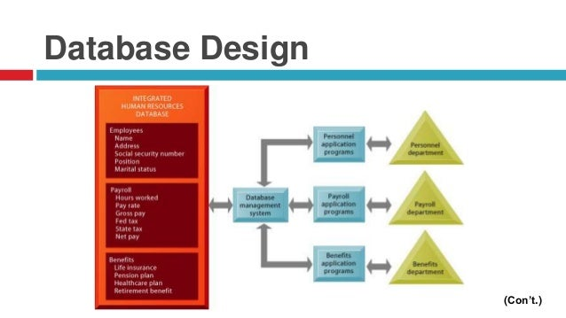 database design process Database application lifecycle the relational database lifecycle, or the process of developing a relational database system, has the following steps: 1 feasibility study 2 requirements collection and analysis 3 database design a conceptual.