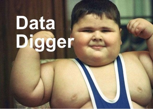Data Digger