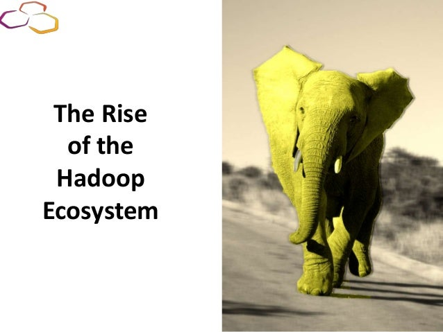 The Rise of the Hadoop Ecosystem