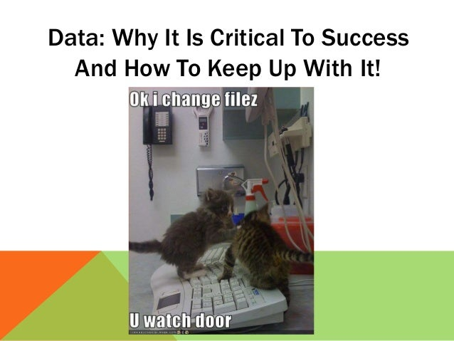 Data: Why It Is Critical To Success And How To Keep Up With It!