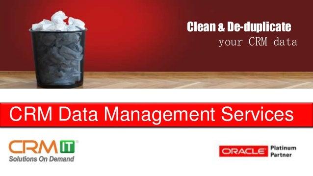CRM Data Management Services