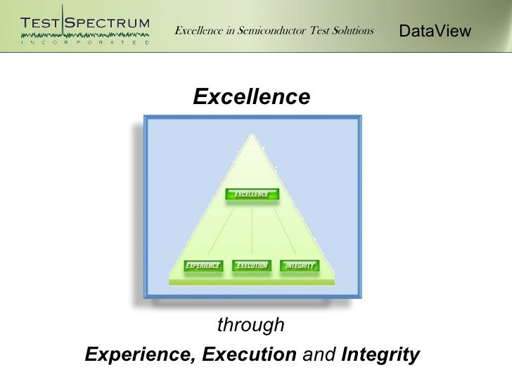 DataView           Excellence             throughExperience, Execution and Integrity