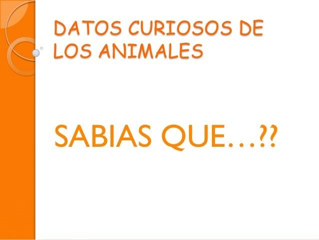 Datos curiosos de los animales (1)