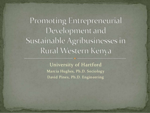 Open 2013:   Promoting Entrepreneurial Development and Sustainable Agribusinesses in Rural Western Kenya