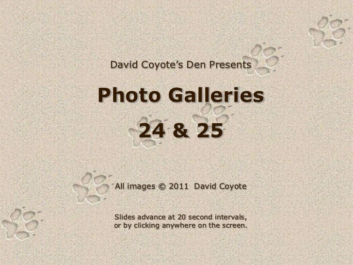 David Coyote's Den PresentsPhoto Galleries       24 & 25 All images © 2011 David Coyote Slides advance at 20 second interv...