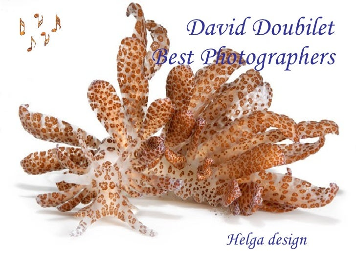 David Doubilet Wd