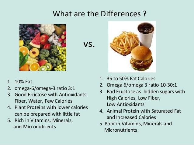 high protein diet essay