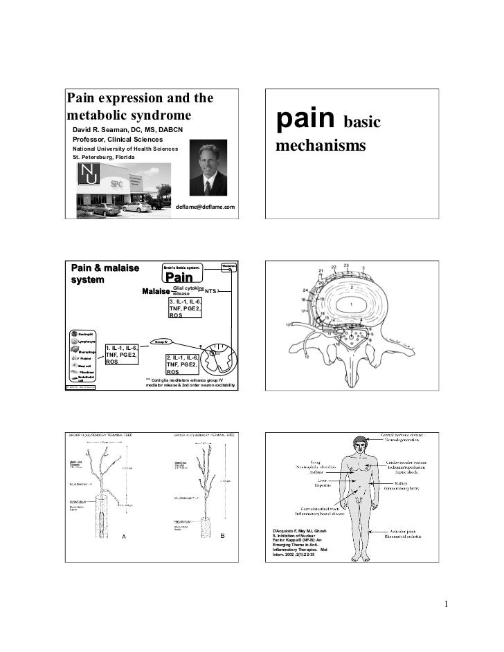 Pain Expression and the Metabolic Syndrome - David R. Seaman