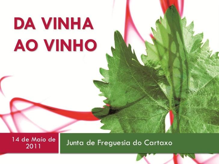 1    DA VINHA    AO VINHO    14 de Maio de   Junta de Freguesia do Cartaxo        2011