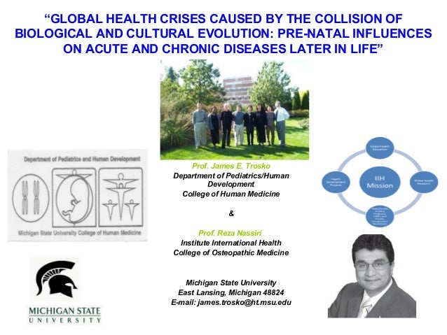 Global Health Crises Caused By The Collision Of Biological And Cultural Evolution: Pre-Natal Influences On Acute And Chronic Diseases Later In Life