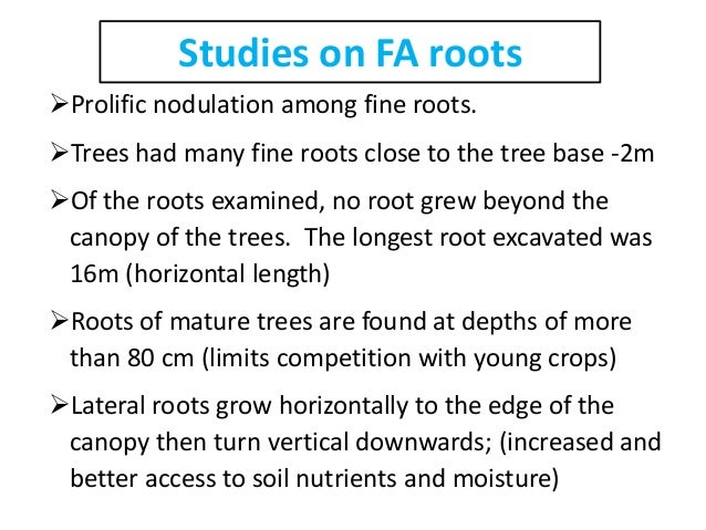 study on faidherbia albida root extract The present study was carried out  effect of aqueous extract of faidherbia albida on kaolin-induced rat paw oedema expressed as percentage inhibition.