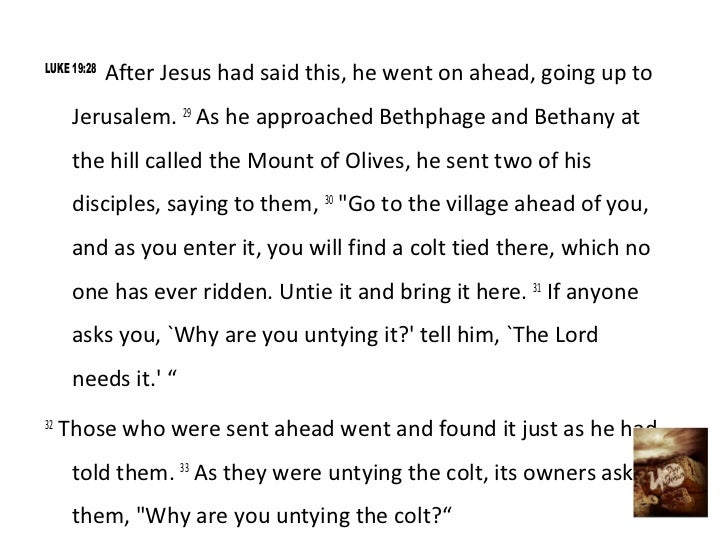 LUKE 19:28             After Jesus had said this, he went on ahead, going up to      Jerusalem. 29 As he approached Bethph...