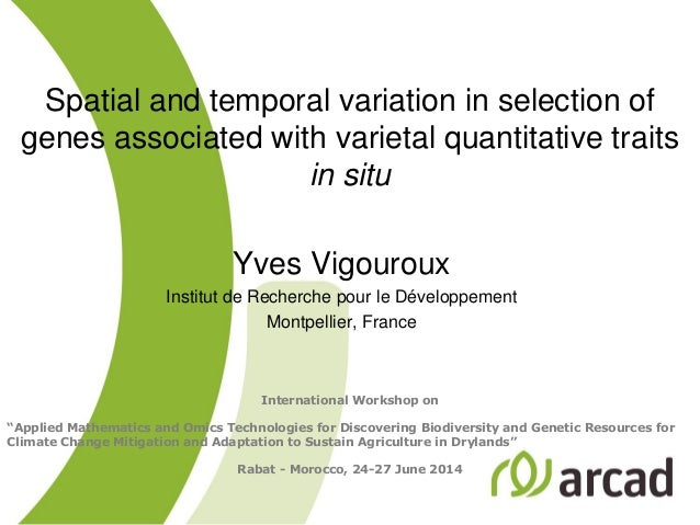 Spatial and temporal variation in selection of genes associated with varietal quantitative traits in situ Yves Vigouroux I...