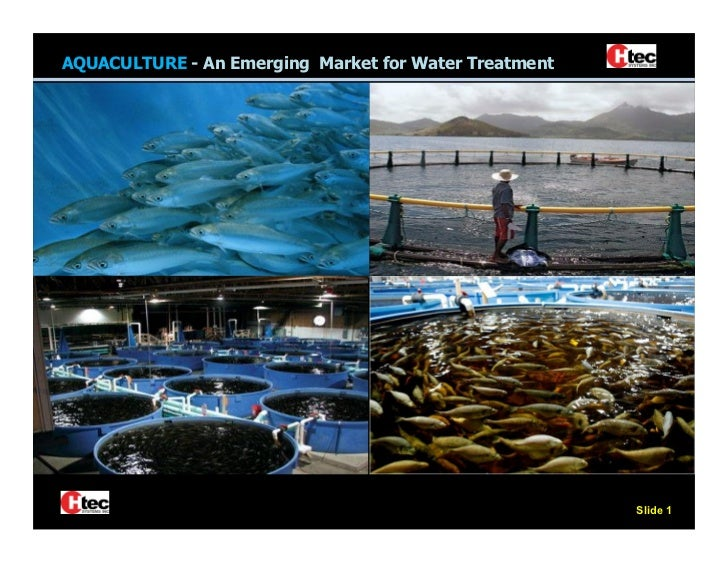 AQUACULTURE - An Emerging Market for Water Treatment                                 The Fastest Growing                  ...