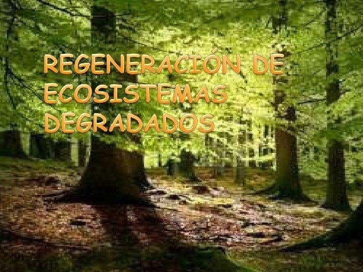Definir conceptos y afianzar conocimientos relacionados con la degradación de losecosistemas y su restauración.Determinar ...