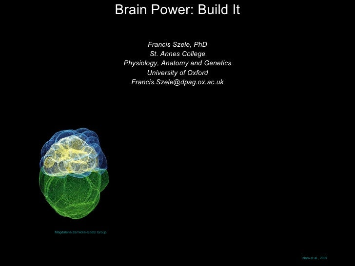 Brain Power: Build It Francis Szele, PhD St. Annes College Physiology, Anatomy and Genetics University of Oxford [email_ad...