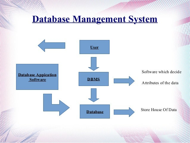 how to create a database management system in access