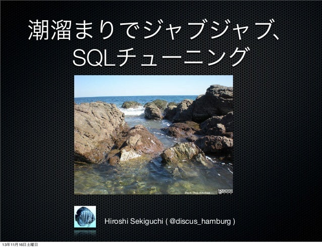 潮溜まりでジャブジャブ、 SQLチューニング  Rock Pool / Michael  Hiroshi Sekiguchi ( @discus_hamburg ) 13年11月16日土曜日