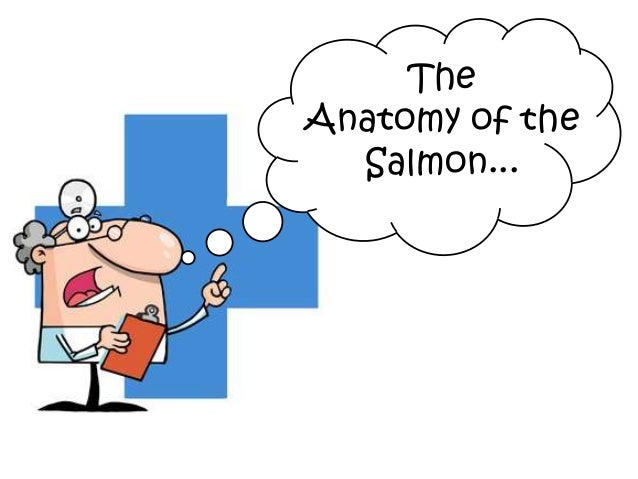 The Anatomy of the Salmon...