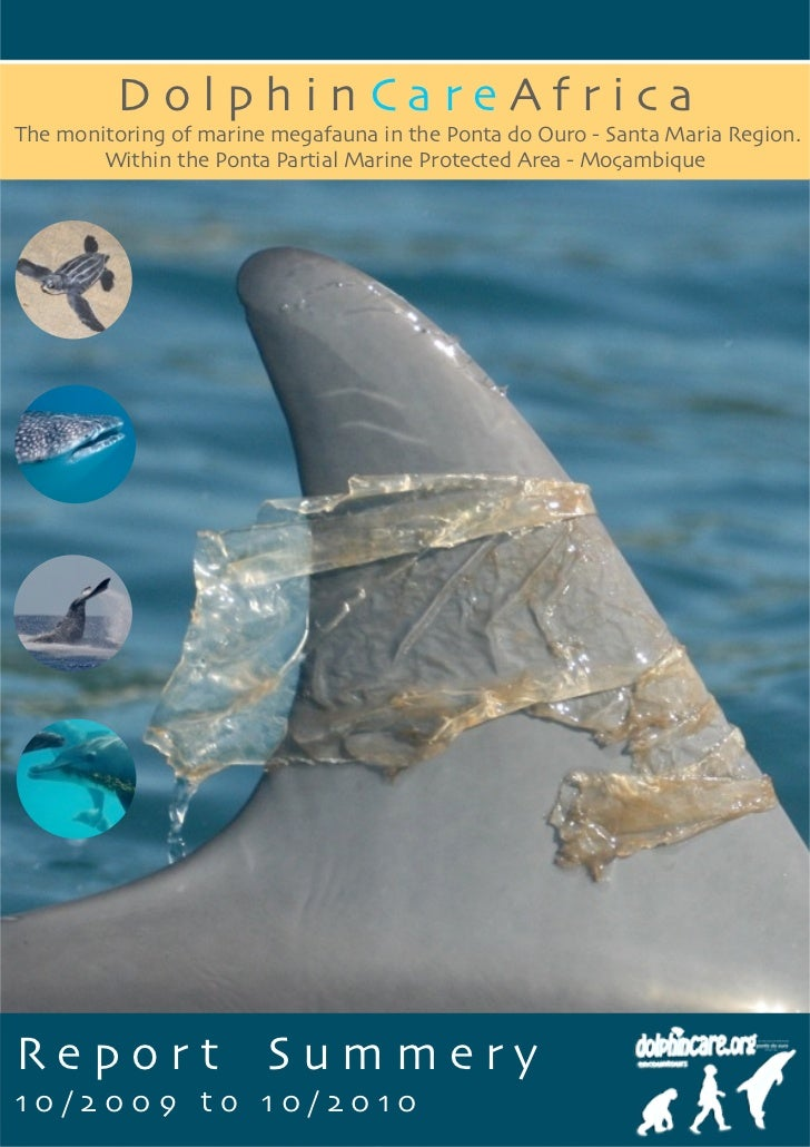 DolphinCareAfricaThe monitoring of marine megafauna in the Ponta do Ouro - Santa Maria Region.        Within the Ponta Par...