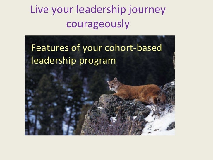 Live your leadership journey courageously Features of your cohort-based leadership program