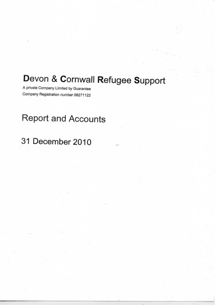 DCRS 2010 Auditor's Report and Accounts