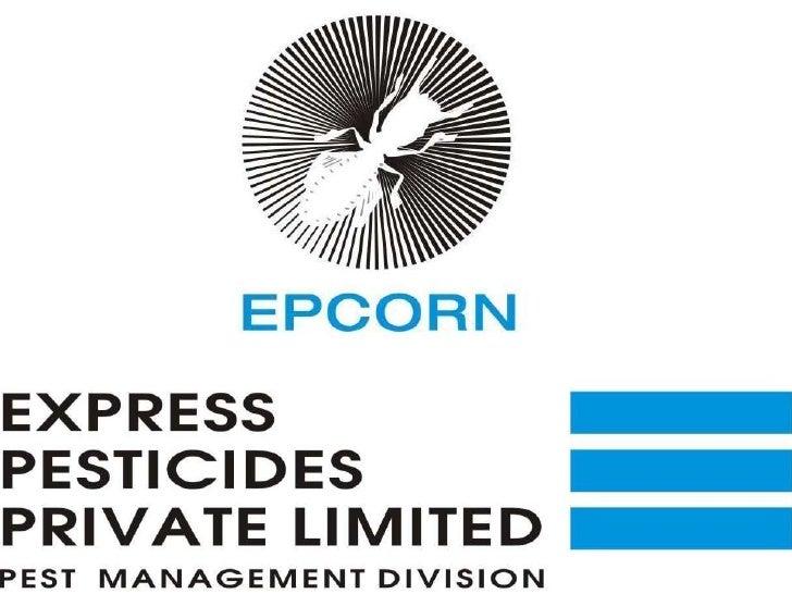 EPCORN - INTRO RETAIL SEGMENT