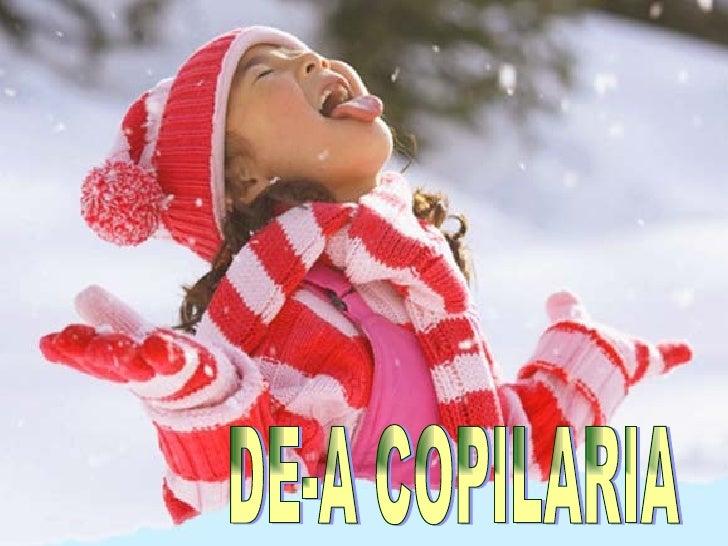 DE-A COPILARIA