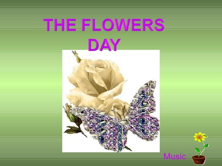 The Flower Day