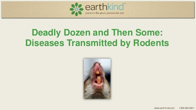 Deadly Dozen and Then Some: Diseases Transmitted by Rodents  www.earth-kind.com  1.800.583.2921