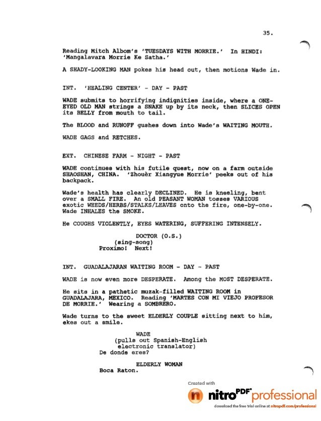 hindi movie script writing