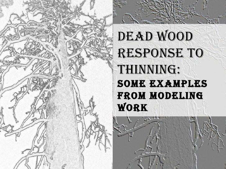 Dead Wood  Response to thinning: Some examples from modeling work