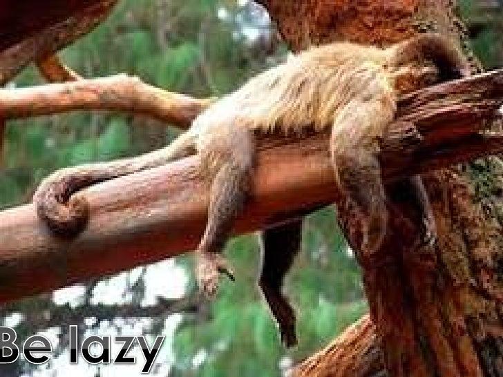 Be lazy<br />