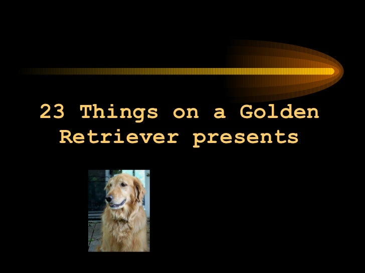 23 Things on a Golden Retriever presents