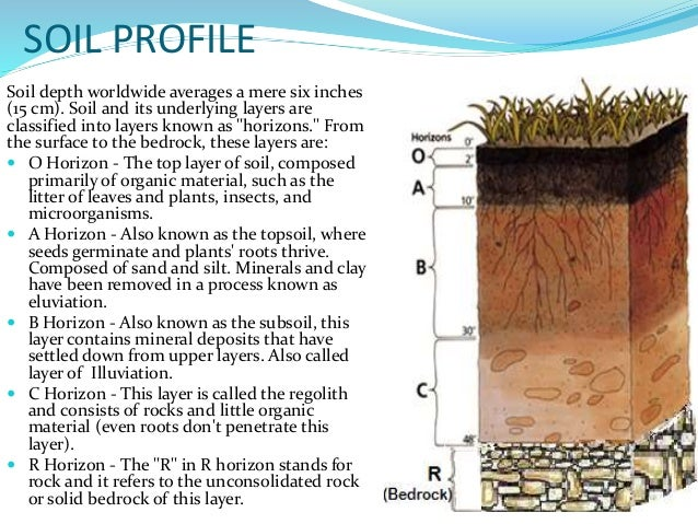 The gallery for bedrock soil layer for Earth soil composition