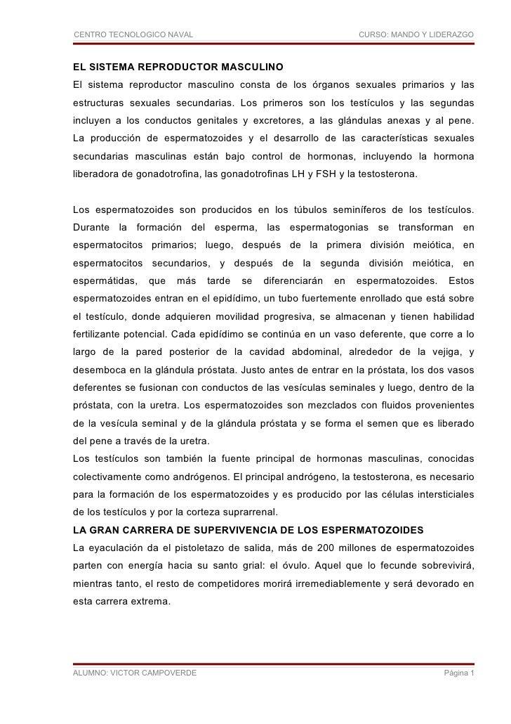 CENTRO TECNOLOGICO NAVAL                                        CURSO: MANDO Y LIDERAZGO    EL SISTEMA REPRODUCTOR MASCULI...