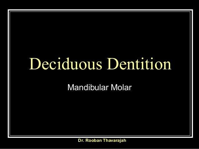 Deciduous Dentition Mandibular Molar  Dr. Rooban Thavarajah
